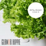 Glamor Hippie Dirty Dozen - Clean 15